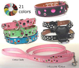 around the collar designer dog collars for small and large dogs