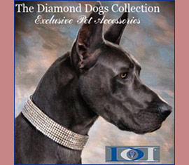 diamond dogs designer collars for dogs