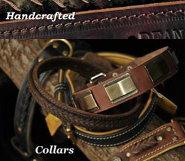 designer collars for dogs