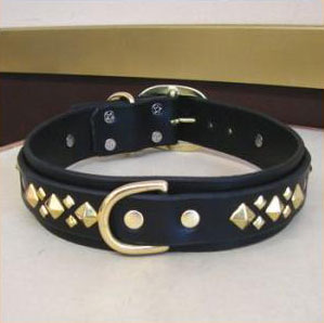 paco dog collar berlin